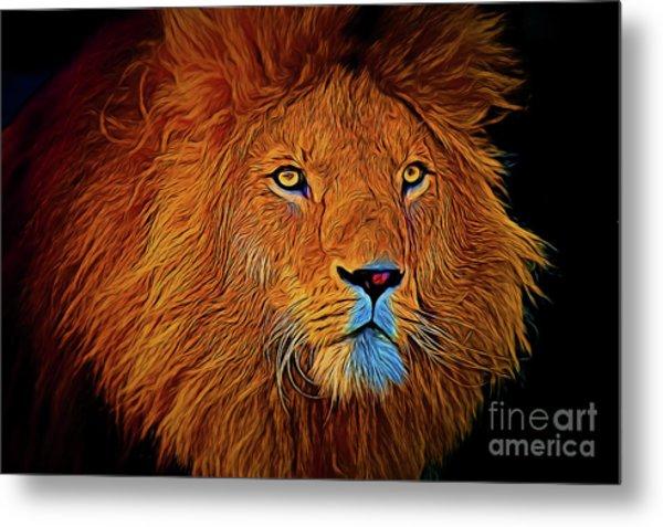 Lion 16218 Metal Print