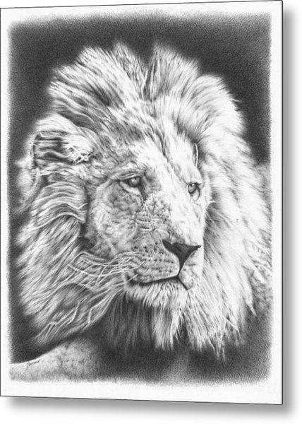 Fluffy Lion Metal Print