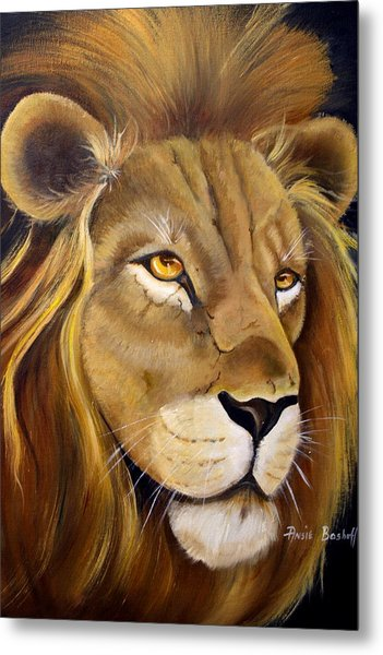 Lion Male Metal Print by Ansie Boshoff