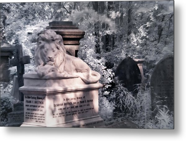 Lion Sleeping In The Shade Metal Print
