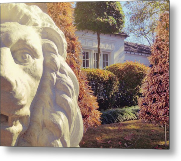 Lions View Of Graceland Metal Print by JAMART Photography