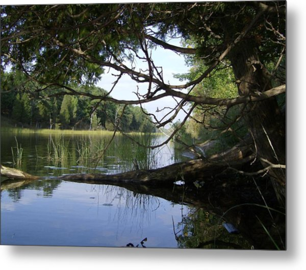 Little Ausable River Metal Print
