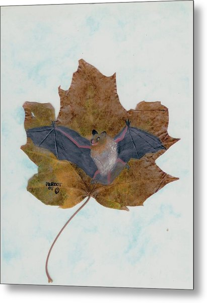 Little Brown Bat Metal Print