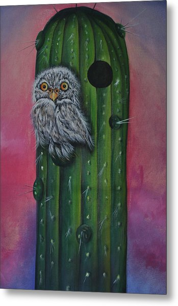 Little Elf Owl Metal Print