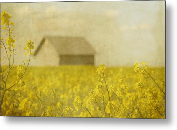 Little House On The Prairie Metal Print