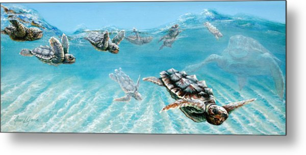 Little Loggerheads Metal Print