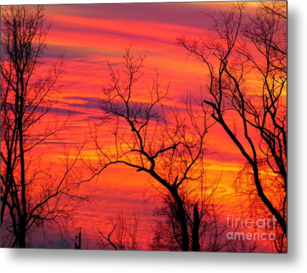 Little More Color At Sunset Metal Print