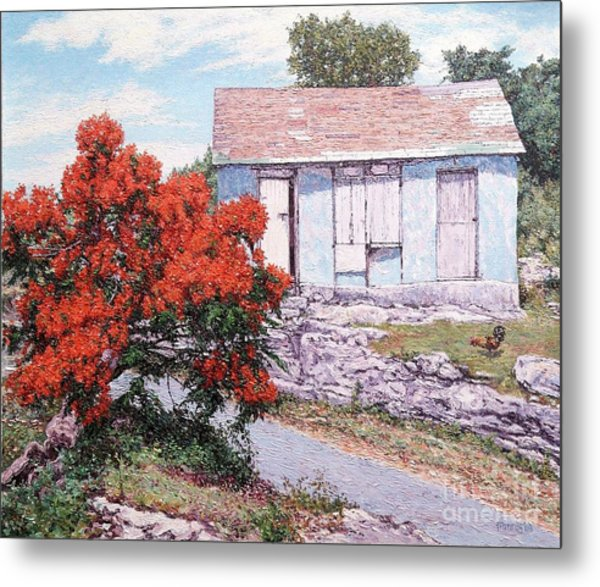 Little Poinciana Metal Print