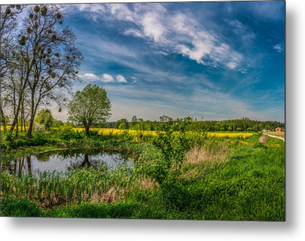 Little Pond Near A Rapeseed Field Metal Print