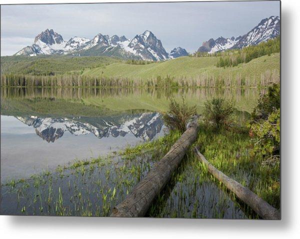 Little Redfish Lake Reflection Metal Print