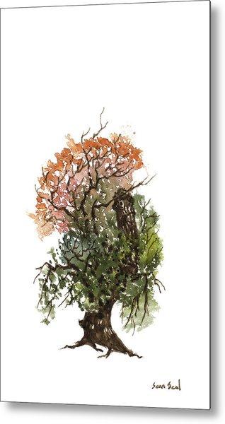 Little Tree 71 Metal Print