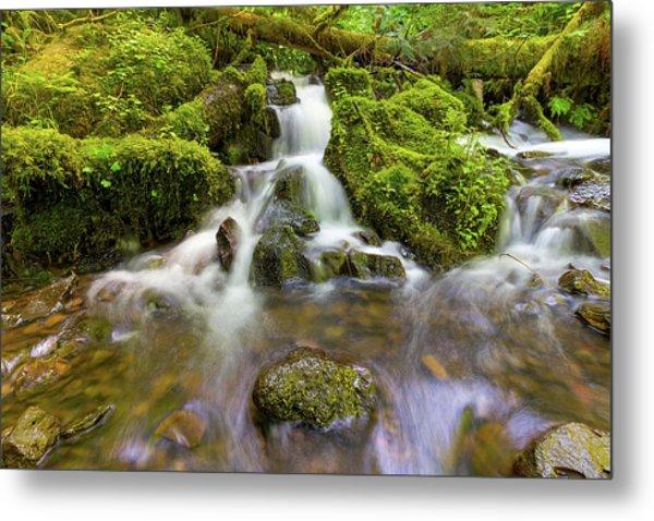 Little Waterfalls Along Wahkeena Creek Metal Print