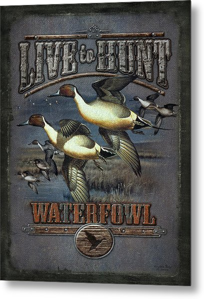 Live To Hunt Pintails Metal Print