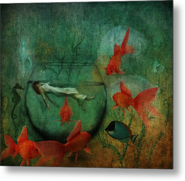 Living In A Fishbowl Metal Print
