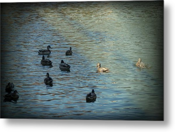 Living In Harmony Metal Print