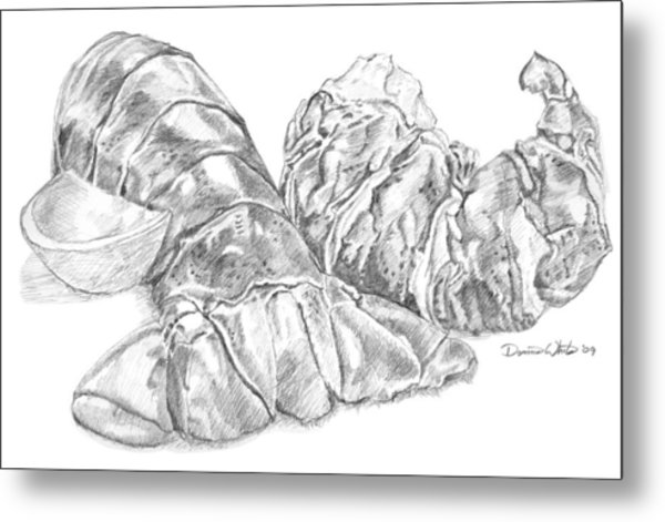 Lobster Shell Drawing Metal Print