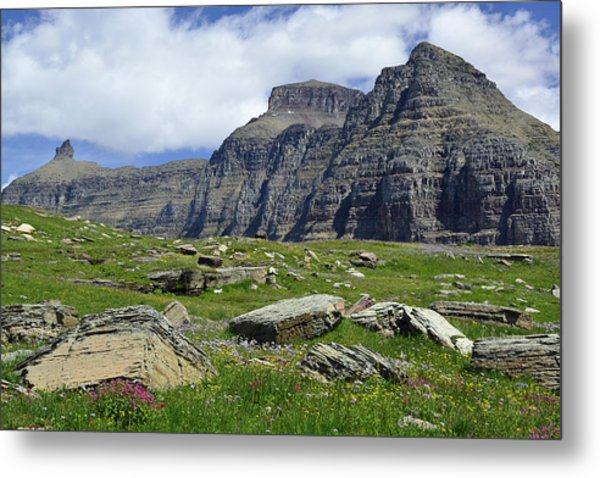 Logan Pass Meadow And Mountains In Glacier National Park Metal Print
