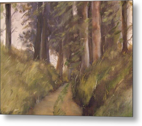 Logging Road Metal Print