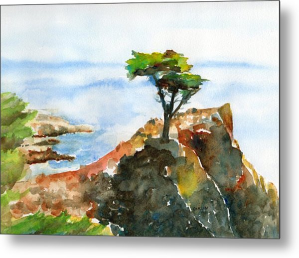 Lone Cypress Pebble Beach Fog Metal Print