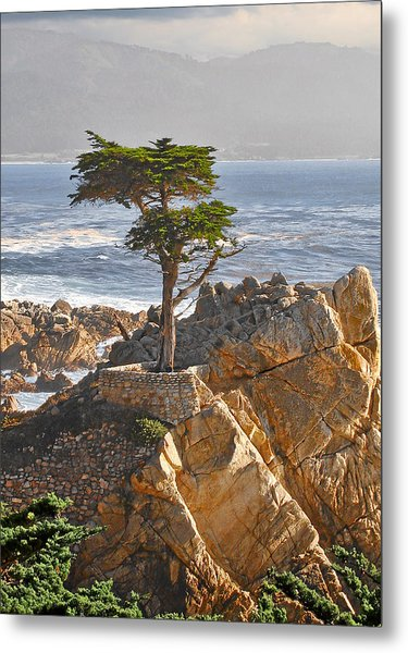 Lone Cypress - The Icon Of Pebble Beach California Metal Print