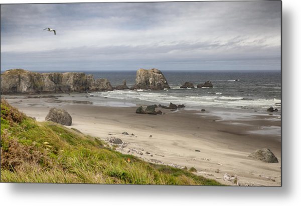 Lone Gull - Bandon Beach Metal Print