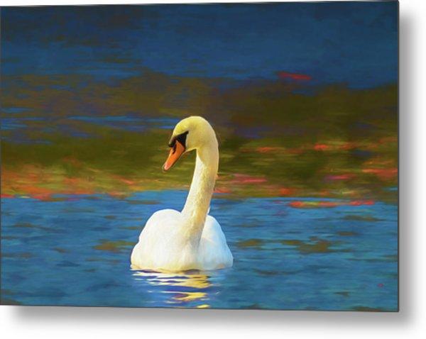 Lone Mute Swan. Metal Print