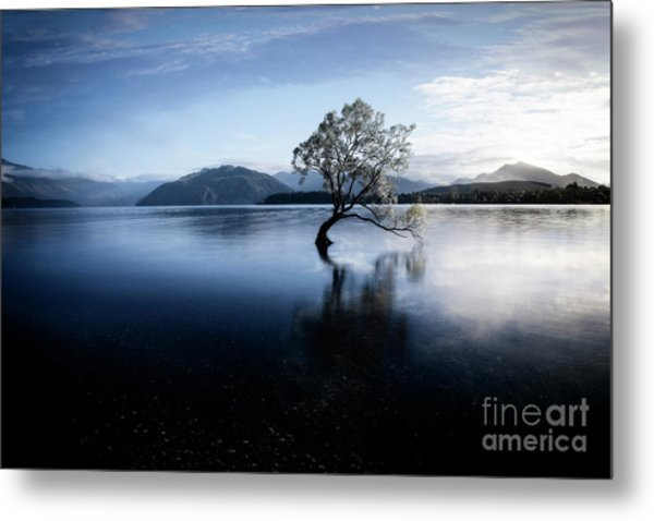 Lone Tree 2 Metal Print