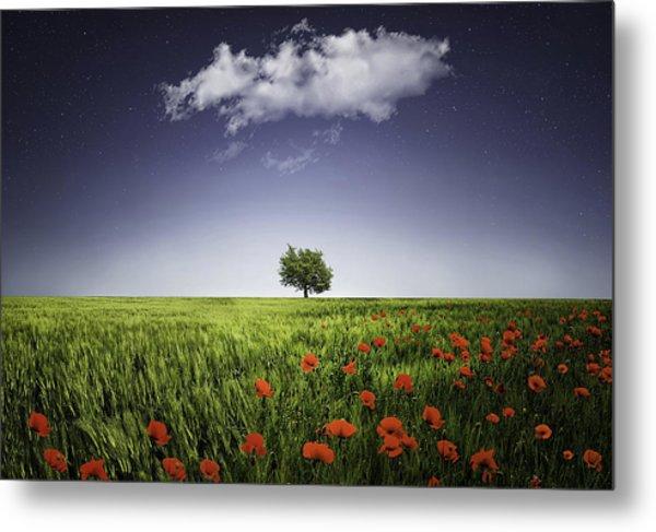 Lone Tree A Poppies Field Metal Print