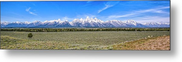 Lone Tree And The Tetons Metal Print