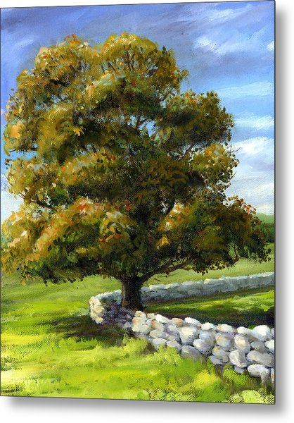 Lone Tree And Wall Metal Print