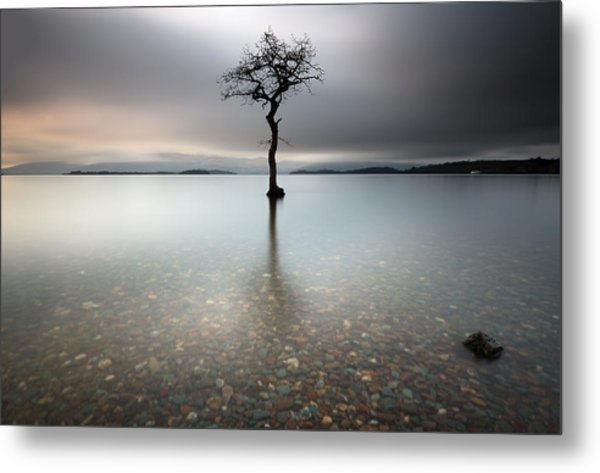Lone Tree Loch Lomond Metal Print