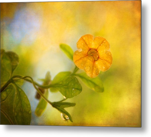 Lone Yellow Flower Metal Print