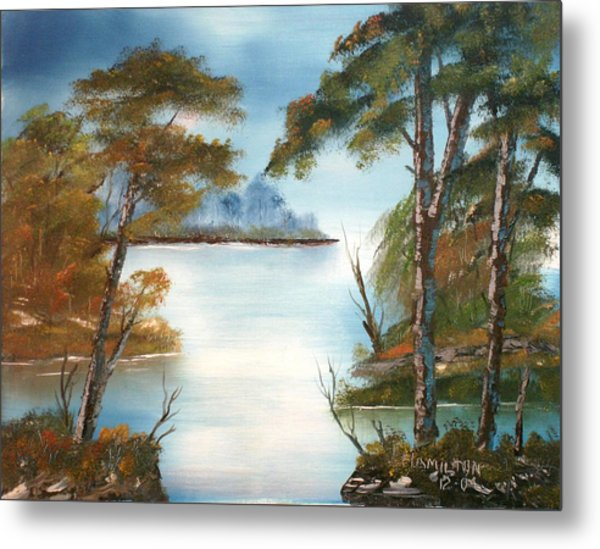 Lonely Bay Metal Print by Larry Hamilton