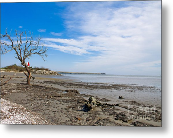 Metal Print featuring the photograph Lonely Beach At Christmas by Sandy Adams