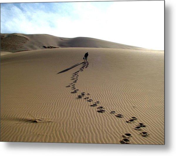 Lonely Hiker In The Gobi Metal Print