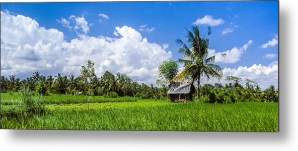 Lonely Rice Hut Metal Print