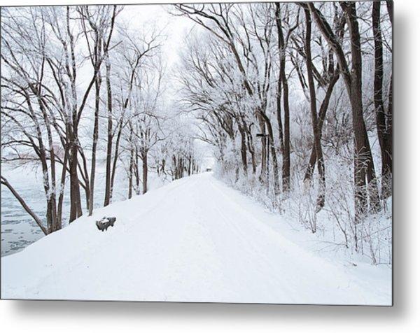 Lonely Snowy Road Metal Print