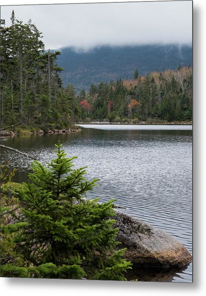 Lonesome Lake Metal Print