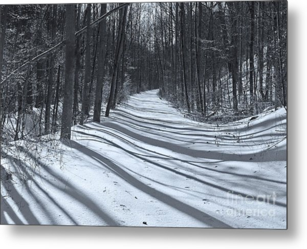 Long Shadows Metal Print by Robert Pilkington