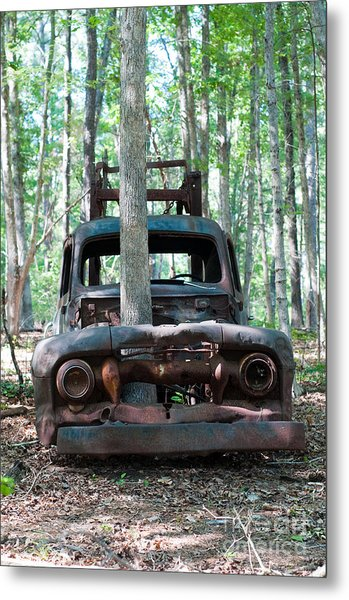 Long Time Gone Metal Print by Maureen Norcross