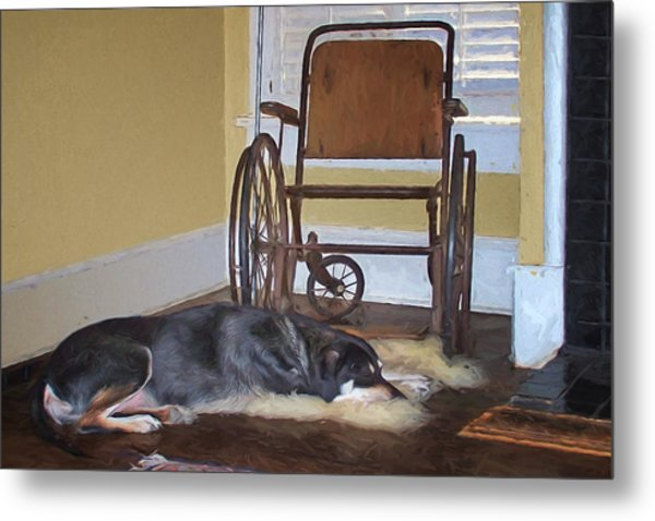Long Wait - Dog - Wheelchair Metal Print
