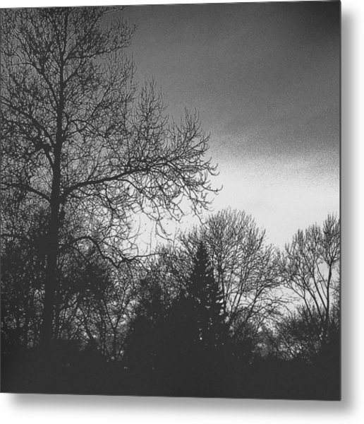 Long Winter Metal Print