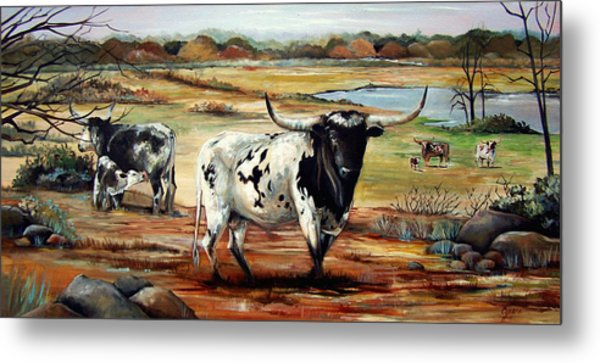 Longhorn Land Metal Print