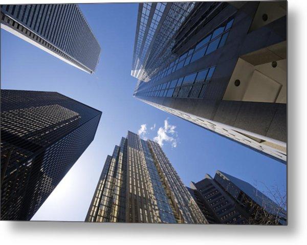 Look Way Up Metal Print by Mary Lane