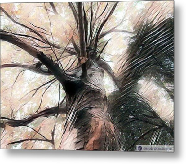 Lookin Up The Tree #digitalart Metal Print by Michal Dunaj
