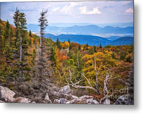 Looking East From Bear Rocks 4290c Metal Print