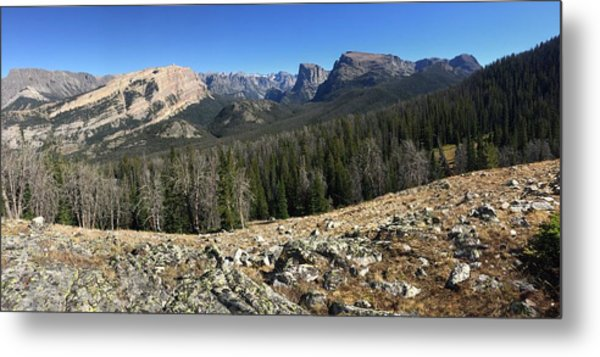 Looking Into The Bridger Wild Lands Metal Print