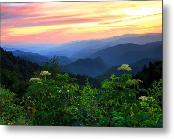 Looking Out Over Woolyback On The Blue Ridge Parkway  Metal Print