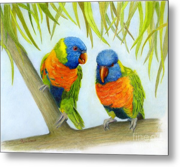 Lorikeet Pair Metal Print