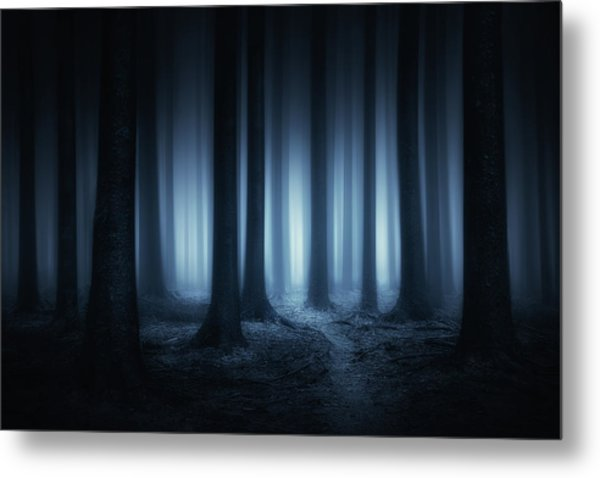 Lost In The Forest Metal Print